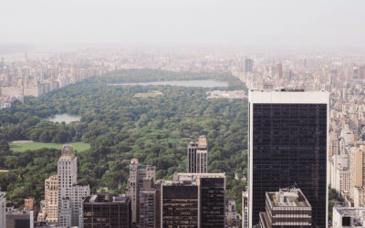 New York Takes Stand: Green Roofs Required For Future Developments